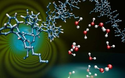A window for trap-free charge transport in organic semiconductors