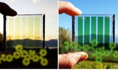 Dye-sensitized solar cells that adapt to different light conditions
