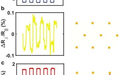 Researchers demonstrate the potential of a new quantum material for creating two spintronic technologies