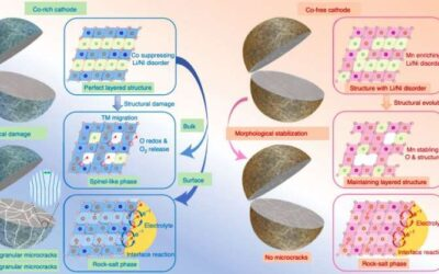 Investigating the role of cobalt in rechargeable batteries to develop more effective cobalt-free cathodes