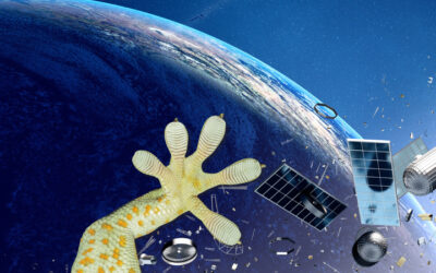 Harpoons, lasers and gecko feet to tackle space debris