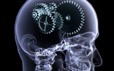 Unveiling the neurobiological processes behind cognitive control