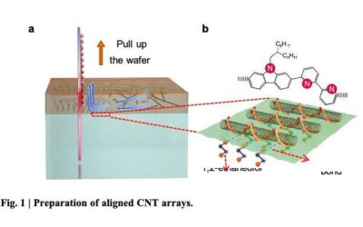 Radiofrequency transistors based on high-purity carbon nanotube arrays